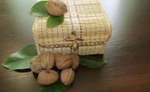 Продажа бойного грецкого ореха оптом.
