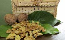 Светлая четверть грецкого ореха от экспортера Yasmina