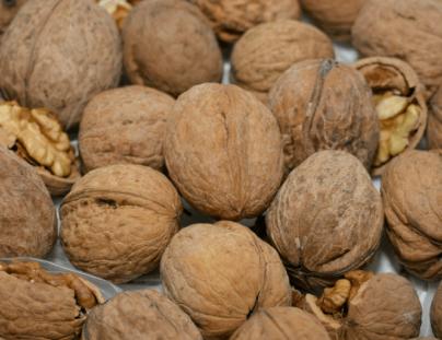 Весь бойный грецкий орех В Украине проходит экологический контроль перед отправкой на экспорт.