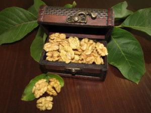 Половинка грецкого ореха, цвет экстра, от экспортера Ясмина